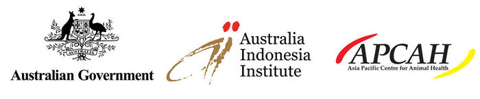 Indonesia AII project logos