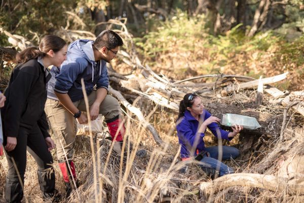 Students prepare and place wildlife traps. Photo: Joe Vittorio.