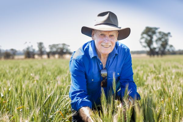 Professor Timothy Reeves in an experimental wheat field at the University of Melbourne's Dookie agricultural campus