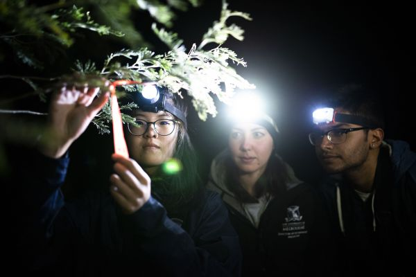 Staff and students hike and spot wildlife. Photo: Joe Vittorio.