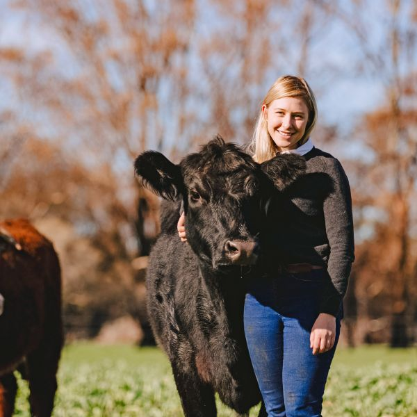 Bacchus Beef founder Victoria Green with her family's cattle on a neighbour's property in Rochford, Victoria. Photo by Chloe Smith, Newspix.