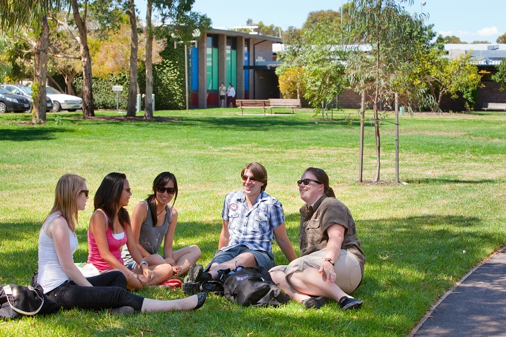 Group of students sitting on the grass talking